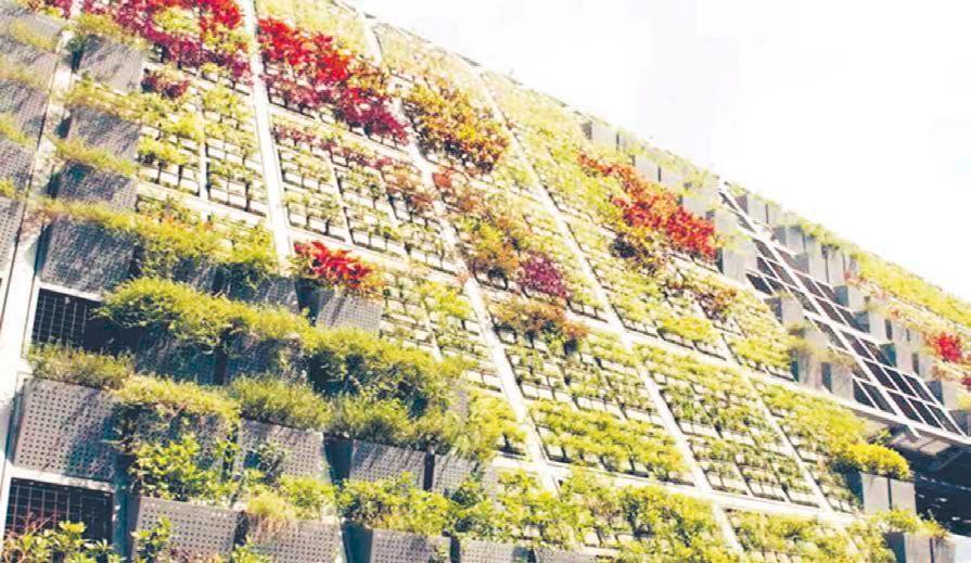zielone tarasy na budynku